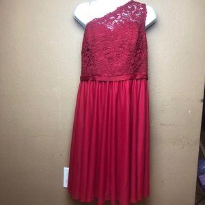 David's Bridal NWT Apple One Shoulder Laced Dress
